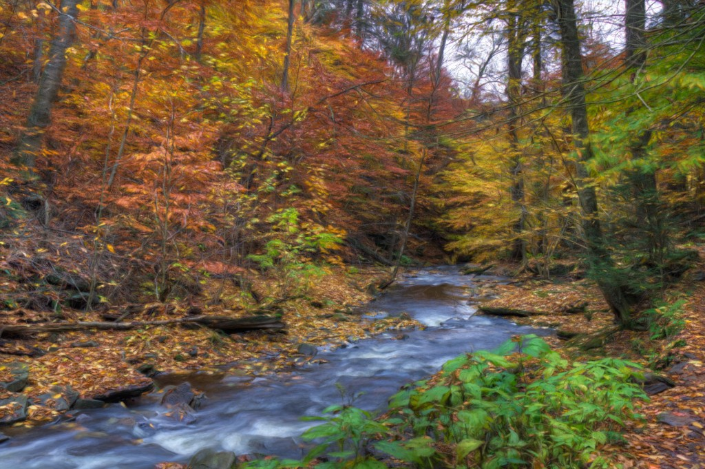 20141022_Ricketts_Glen-201_2_3_4_5_6_7_tonemapped_web