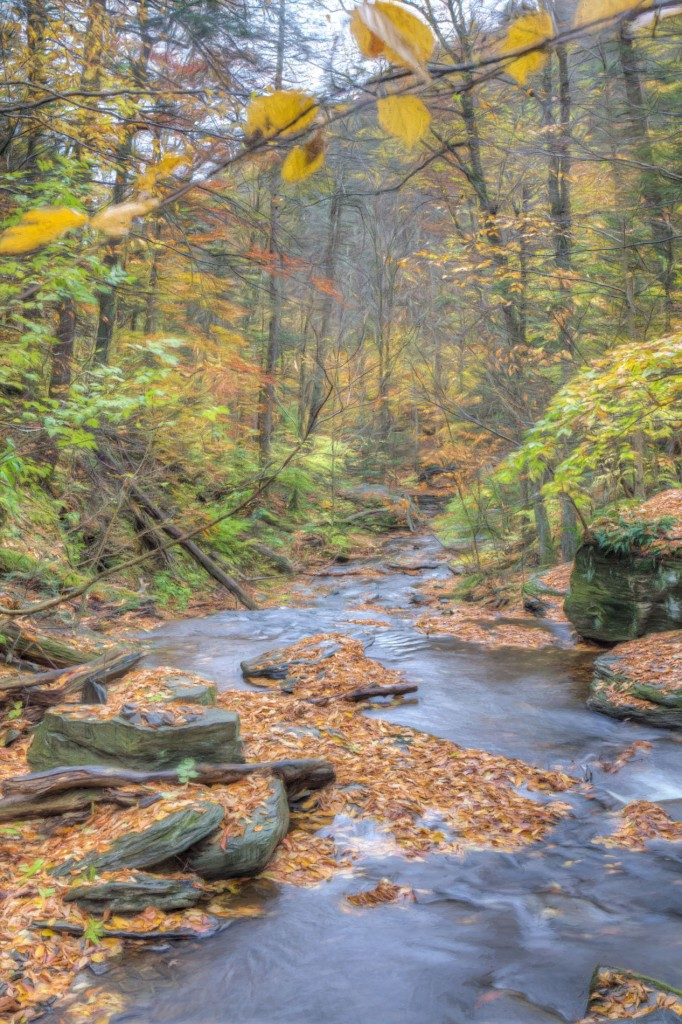 20141022_Ricketts_Glen-286_87_88_89_90_91_92_tonemapped_BReynolds_web