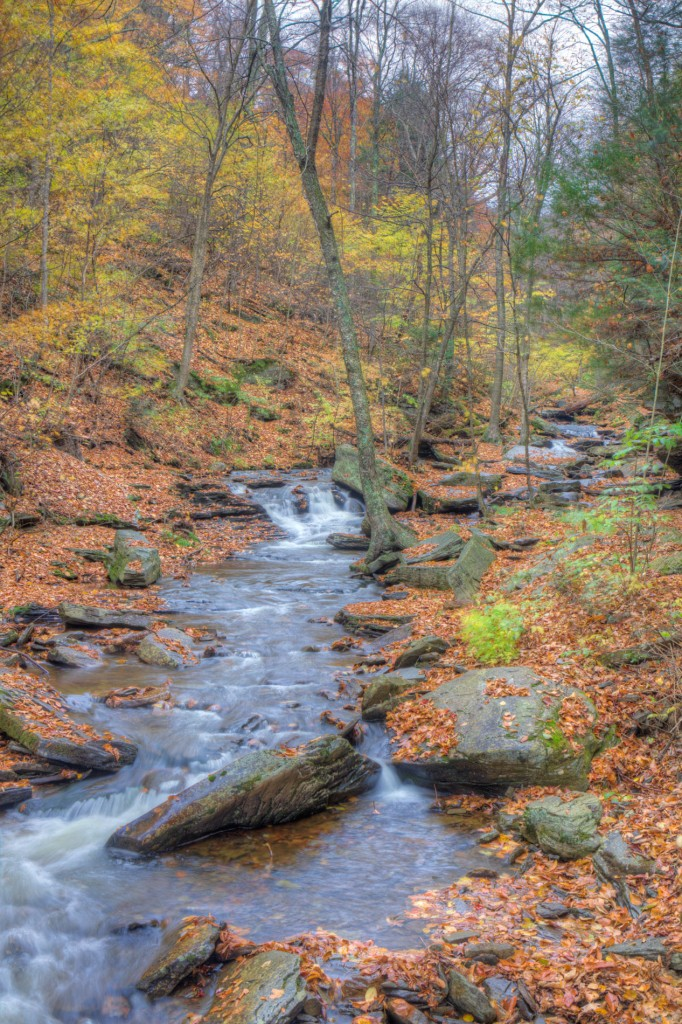 20141022_Ricketts_Glen-360_1_2_3_4_5_6_tonemapped_web