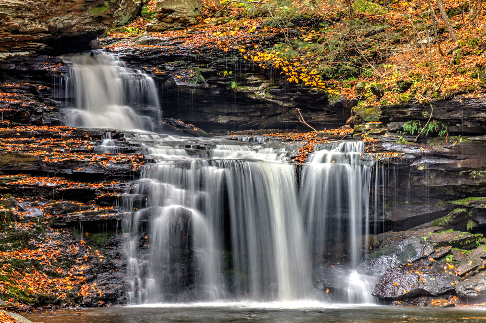 B Reynolds Falls at Ricketts Glen State Park.