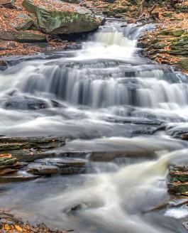 Quiet Stream and Roaring Stream