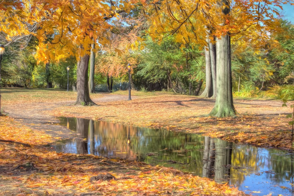 20151029_Prospect_Central_Parks-57_58_59_60_61_62_63_tonemapped_web