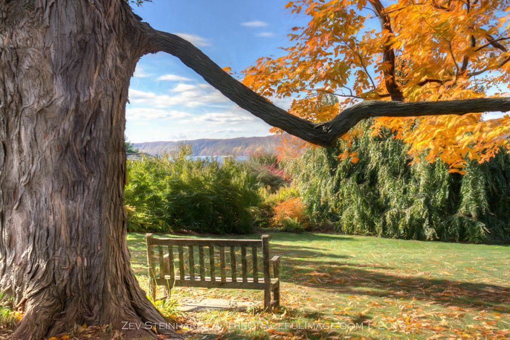 A peaceful bench to sit and read in the autumn at Wave Hill, Bronx, NY