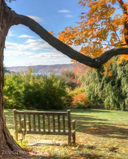 Catching Up – Part I – Fall Foliage