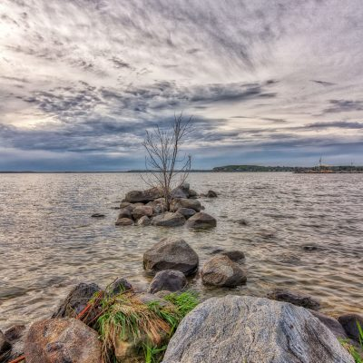 A cloudy day at Tenney Park.